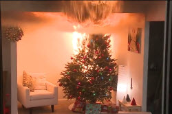 Screen capture of a video showing a Christmas tree catching fire in a laboratory setting